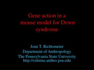 Gene action in a  mouse model for Down syndrome