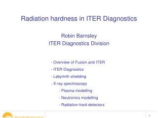 Radiation hardness in ITER Diagnostics