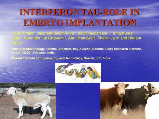 INTERFERON TAU-ROLE IN EMBRYO IMPLANTATION
