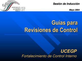 UCEGP Fortalecimiento de Control Interno