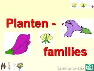Planten -  families