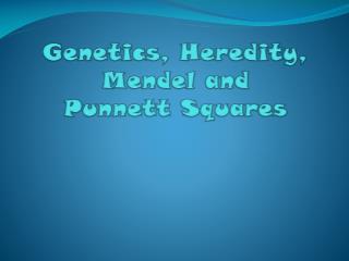 Genetics, Heredity, Mendel and  Punnett  Squares