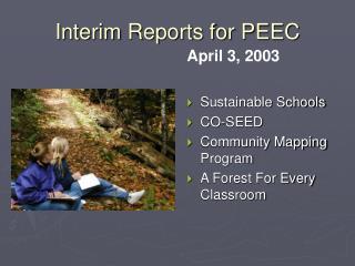 Interim Reports for PEEC