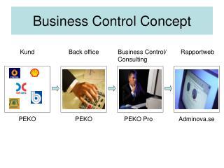Business Control Concept