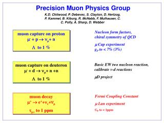 Precision Muon Physics Group
