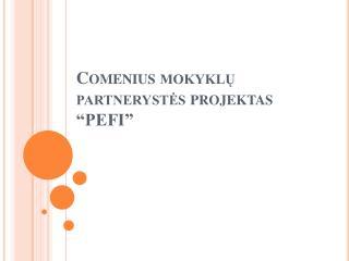 """Comenius  mokyklų partnerystės projektas """"PEFI"""""""