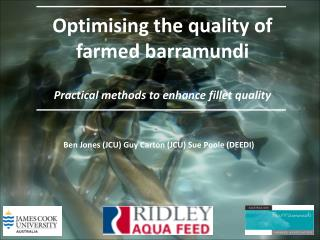 Optimising the quality of farmed barramundi Practical methods to enhance fillet quality