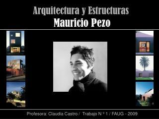 Profesora: Claudia Castro /  Trabajo N º 1 / FAUG - 2009