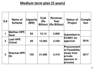 Medium term plan (5 years)
