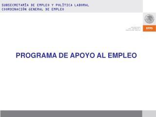PROGRAMA DE APOYO AL EMPLEO