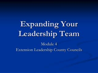 Expanding Your Leadership Team