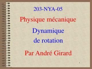 203-NYA-05