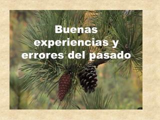 Buenas experiencias y errores del pasado