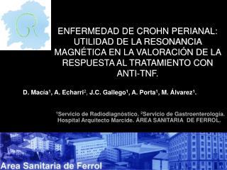 D. Macía 1 , A. Echarri 2 ,  J.C. Gallego 1 , A. Porta 1 , M. Álvarez 1 .