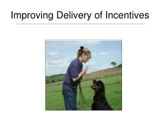 Improving Delivery of Incentives