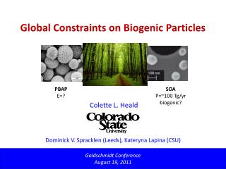 Global Constraints on Biogenic Particles