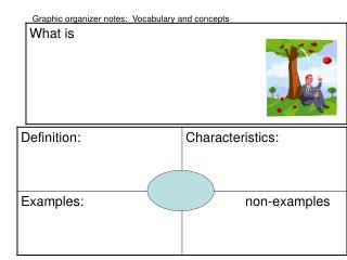 Graphic organizer notes:  Vocabulary and concepts