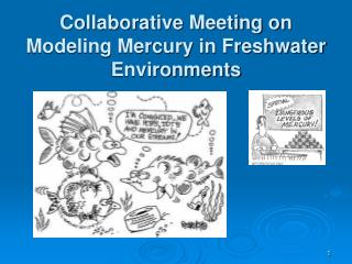 Collaborative Meeting on Modeling Mercury in Freshwater Environments