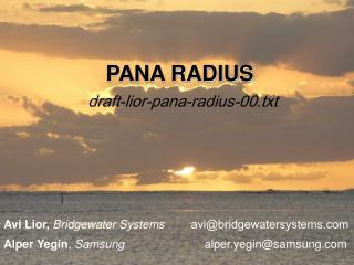 PANA RADIUS draft-lior-pana-radius-00.txt