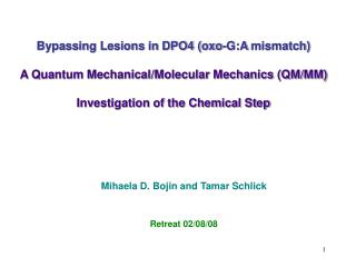 Bypassing Lesions in DPO4 (oxo-G:A  mismatch)