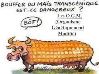 Les O.G.M. (Organisme Génétiquement Modifié) )