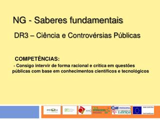 NG - Saberes fundamentais