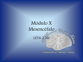 Módulo X Mesencéfalo