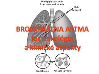 BRONCHIÁLNA ASTMA   farmakológia a  klinické aspekty