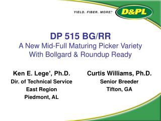 DP 515 BG/RR A New Mid-Full Maturing Picker Variety With Bollgard & Roundup Ready