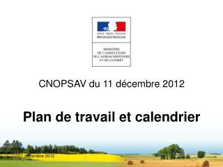 CNOPSAV du 11 décembre 2012