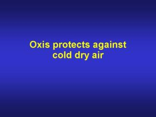 Oxis as reliever medication (2)