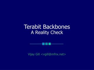 Terabit Backbones A Reality Check