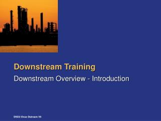 Downstream Training