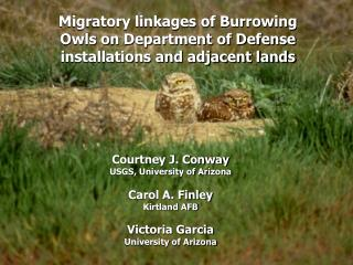 Migratory linkages of Burrowing Owls on Department of Defense installations and adjacent lands