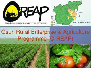 Osun Rural Enterprise & Agriculture Programme (O-REAP)