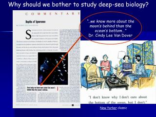 Why should we bother to study deep-sea biology?
