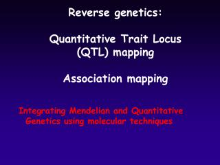 Reverse genetics: Quantitative Trait Locus  (QTL) mapping Association mapping