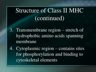 Structure of Class II MHC (continued)