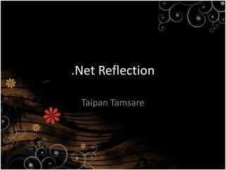 .Net Reflection