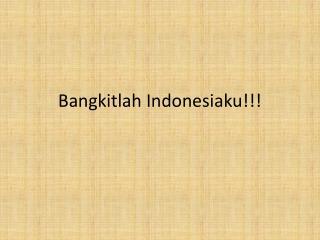 Bangkitlah Indonesiaku!!!