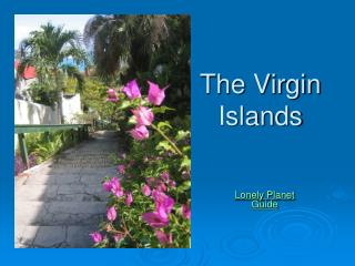 The Virgin Islands