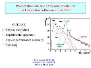 Prompt dimuons and D meson production in Heavy Ion collisions at the SPS