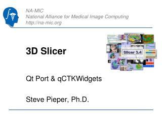 3D Slicer