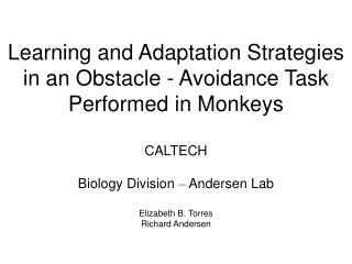 Cohen & Andersen (2002)  Nat Rev Neurosci  3