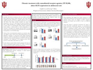 Chronic treatment with cannabinoid receptor agonist, CP 55,940,