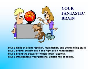 YOUR  FANTASTIC BRAIN
