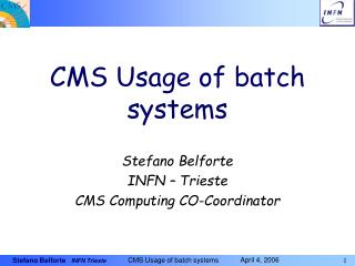 CMS Usage of batch systems