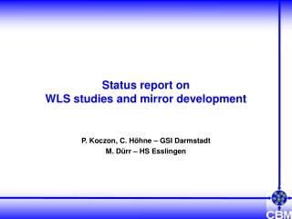 Status report on WLS studies and mirror development