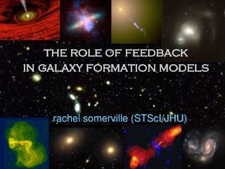 rachel somerville (STScI/JHU)