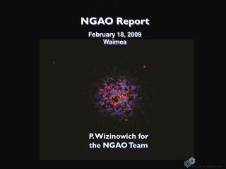 NGAO Report February 18, 2009  Waimea